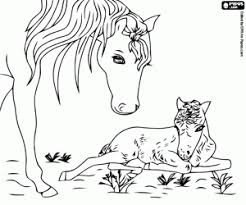 Horses Coloring Pages Printable Games