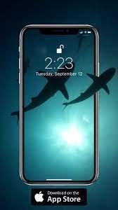 Shark wallpaper iphone ...