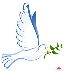 dove clipart peace dove 7