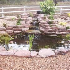 ornamental pond starter pack 11 square