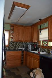 Kitchen fluorescent lighting ideas Fixture Replacing The Overhead Florescent Light In Kitchen Our Wolf Den Ceiling And Lighting Ideas Pedircitaitvcom Kitchen Fluorescent Lighting Ideas Took Out The Decorative Light