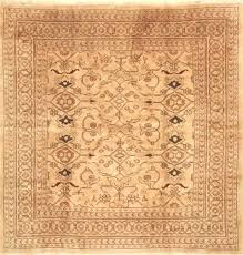 square area rugs brown hand knotted wool 8 x