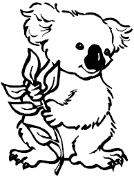 koala colouring in image can be converted to a collage exercise as well image found on coloring ws