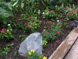 Small Garden Ideas With Bark