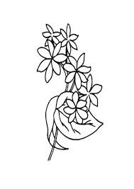 Free printable jasmine coloring pages. Coloring Pages Free Jasmine Coloring Pages