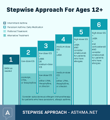 Asthma Prevention And Control Medications Asthma Net