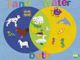Venn Diagram Ideas Kids Easy And Fun Way To Practice Creating Venn Diagrams With Young Kids
