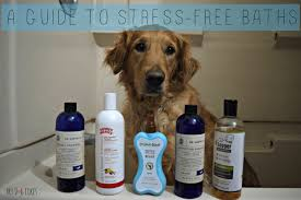 don t miss our step by step instructions on how to bathe a