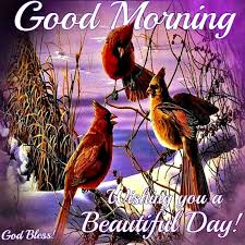 Beautiful Winter Morning Quotes Best Of Good Morning Wishing You A Beautiful Day Daily Greetings