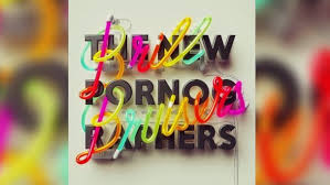 Image result for the new pornographers album covers