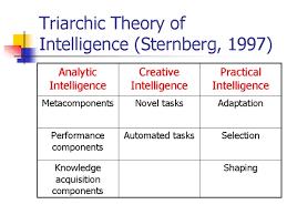 Sternberg Intelligence Robert Sternbergs Triarchic Theory Multiple Intelligence