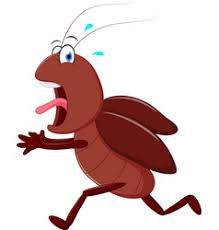 Image result for cartoon roach