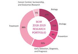 Research Portfolio Pie Chart 2018 2019 Play For P I N K