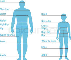 Man And Boy Size Chart Human Front Stock Vector