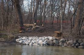 urban wilderness menomonee river restoration a photo essay today the dam the pipes and the pool are all gone sadly the tree from which the kids strung their rope swing was also removed to facilitate the project