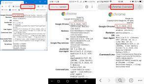 which version of google chrome do i