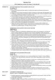 Sample Management Specialist Resume Workforce Management Specialist Resume Samples Velvet Jobs 19