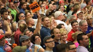 Image result for Trump voters