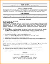 Sample Resume Of A Financial Analyst Sample Resume Summary For Finance Danayaus 12