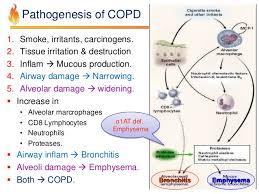Pathophysiology Of Emphysema Flow Chart Pathology Of Copd