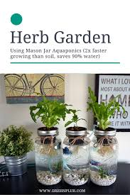 3 mason jar aquaponics kit organic sustainable fish hydroponics herb garden