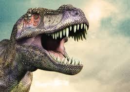 t rex dinosaur wallpaper hd 3508x2480