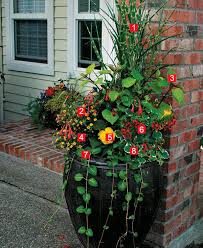 Container Plantings In The Shade Yield A Spectacular Garden  Fine Container Garden Ideas For Shade