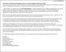 Job Application Resume Cover Letter Job Application Template Word Website Design Brief