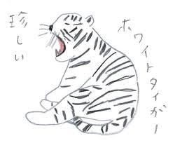 トラを描いてみよう ミヤタチカのお絵描き動物園 ゆるく楽しい描き方