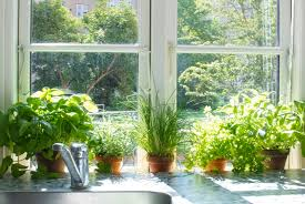 Kitchen Garden Planter Indoor Herb Planter Planter Designs Ideas