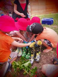 Kitchen Garden Program Kitchen Garden Program Clovelly Child Care Centre