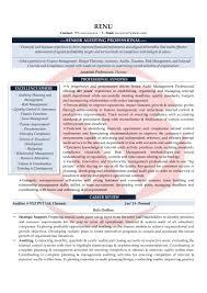 Auditor Sample Resumes Download Resume Format Templates