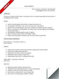 Caregiver Job Description For Resume Best of In Home Caregiver Resume Caregiver Resume Sample Professional Job