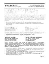 Resume For Government Job Government Of Canada Resume Builder Shalomhouseus 8