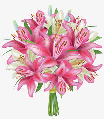 white and pink lilies flowers bouquet png clipart image beautiful flower good night