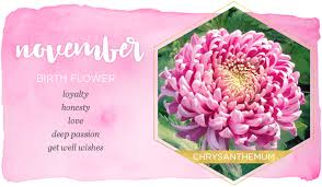 Birth Flower Chart Birth Month Flowers And Their Meanings