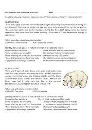 natural selection worksheet answer key darwins natural selection ...
