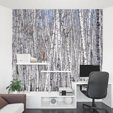 wallpaper for office walls. White Birch Trees Wall Mural Wallpaper For Office Walls