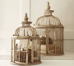 Decorative Bird Cage to Make Your Home Interior Appealing |  pseudonumerology.com