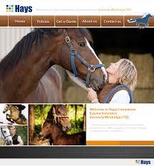 horse insurance quote comparison 44billionlater