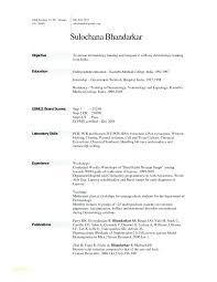 Resume Pdf Template Resume Templates Curriculum Vitae Samples Pdf