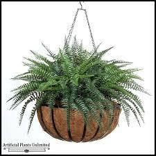 ferns for hanging baskets fern in basket outdoor rated fake