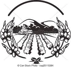 coffee plantation illustration.  Coffee Coffee Plantations Banner  Csp25115384 And Plantation Illustration A