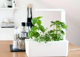 hydroponic herb garden hydroponic herb garden hydroponic herb garden diy
