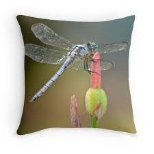 Joann Fabrics Pillow Covers