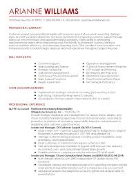Functional Summary Resume Examples Customer Service Unique Summary