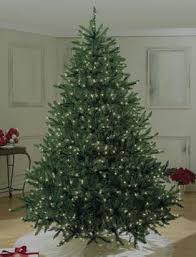 6\u0027 to 6.5\u0027 Christmas Trees Outdoor Decorations: Artificial Tree | Pre Lit