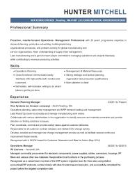 Leapfrog Demand Planning Manager Resume Sample Manalapan New