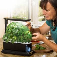Led Kitchen Garden Miracle Gro Aerogarden Sprout Plus With Gourmet Herbs Seed Pod Kit