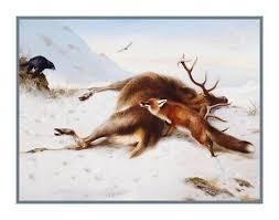 Naturalist Thorburns Fox Deer Not For Larder Counted Cross